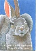 Hand-Made Painting by nature artist Rachel - Sleepy Bunny